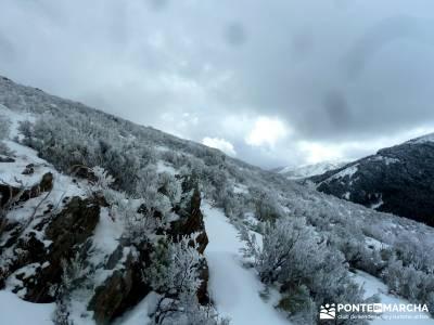 Hayedo de Montejo - Cuerda de la Pinilla; web senderismo; senderismo en invierno
